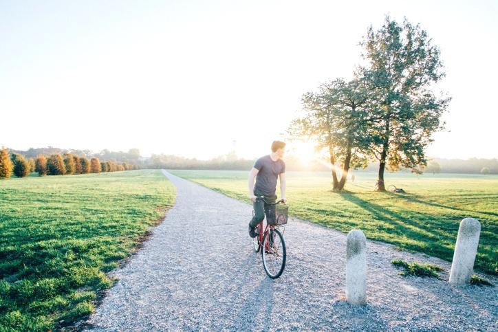 himmel, resa, resa, cykel, väg, träd, äventyr