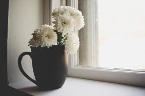 petals, flower pot, vase, window, wood, beautiful, bloom, blossom, bright, ceramic cup