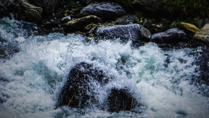 hullám, víz, nedves, part, folyó, rock, splash