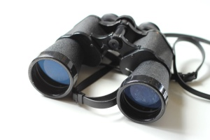 glasses, spy, binoculars, black