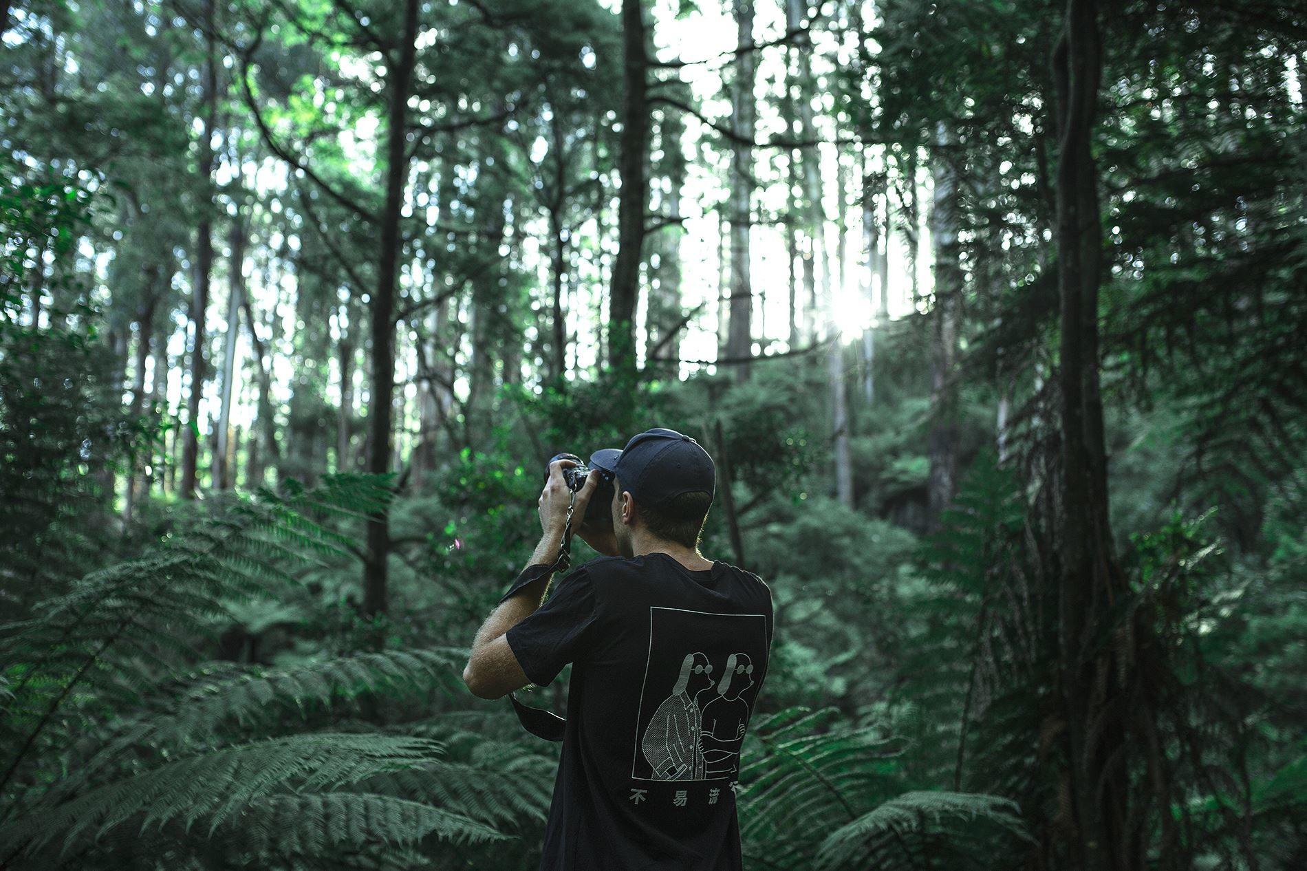 красивые картинки мужчина лес упрощенно