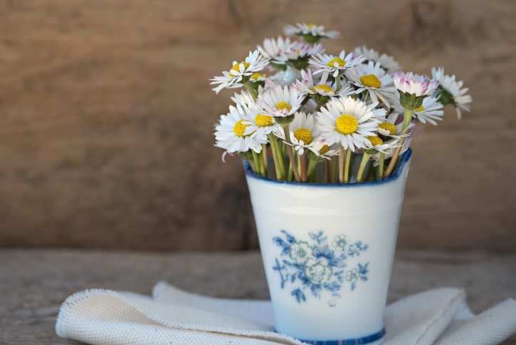 bloom, flora, flowers, vase, blossom