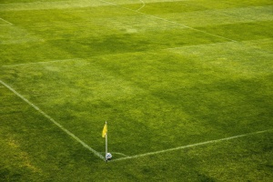 football, grass, green grass, flag, pitch, soccer, sport