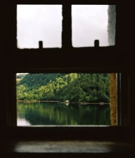water, window, wood, forest, lake, tree