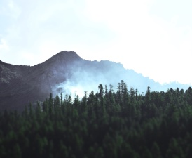 mountain, nature, sky, trees, forest, fog