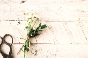 flowers, leaves, rustic, scissors, surface, texture, wood