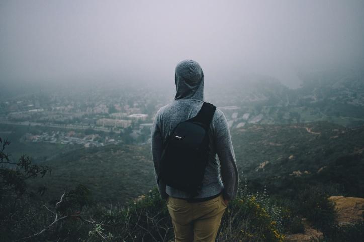 nebbia, natura, persona, albero, uomo, giacca