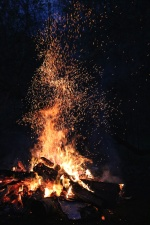 fire, firewood, flame, forest, heat, hot, night, smoke, spark