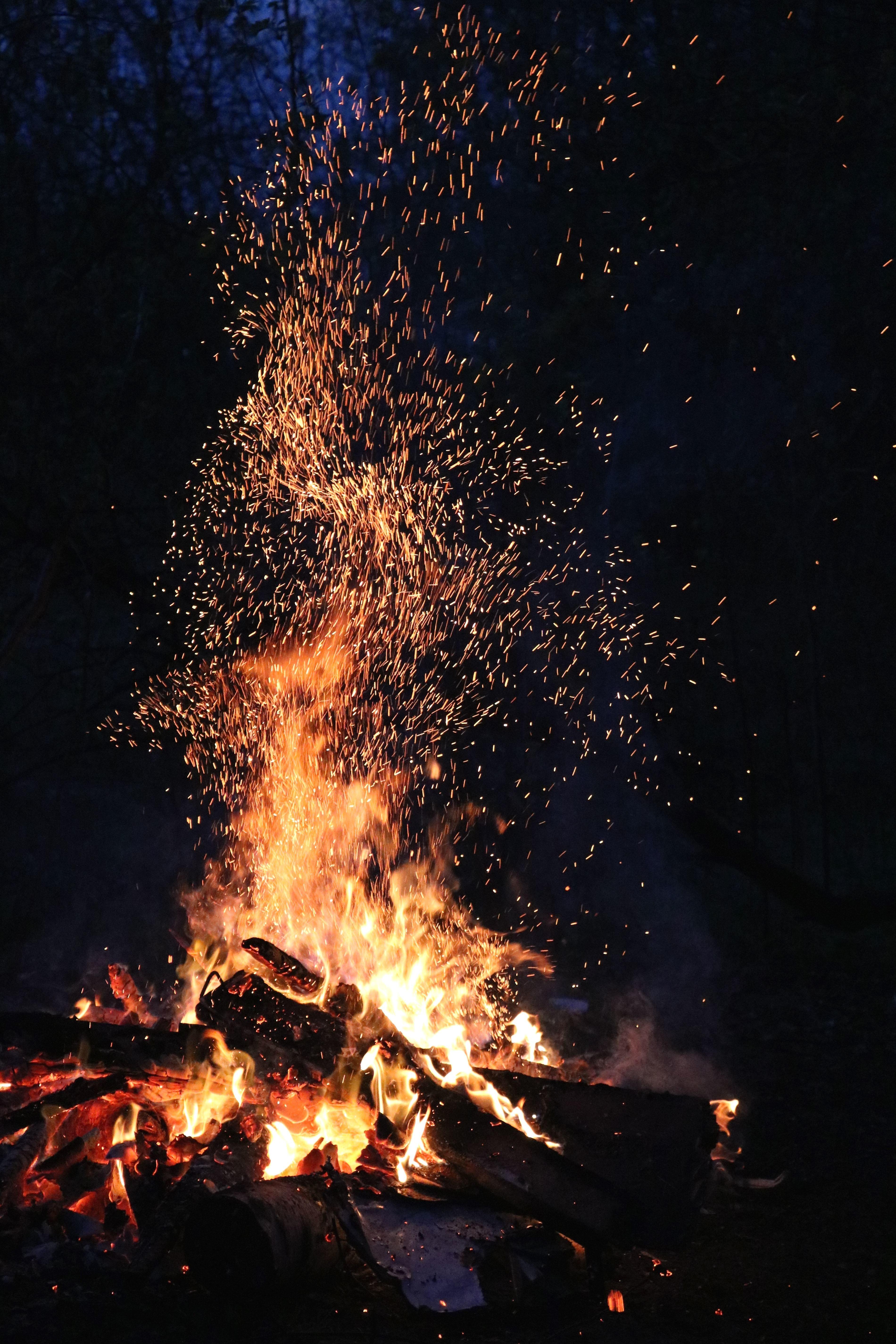 Kostenlose Bild: Feuer, Brennholz, Flamme, Wald, Hitze, heiß, Nacht ...