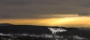 travel, tree, winter, woods, forest, idyllic, landscape