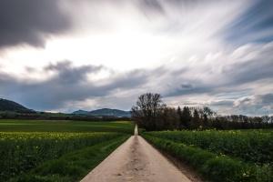 manzara, dağlar, doğa, yol, bitkiler, ağaçlar