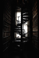 window, wood, architecture, art, shelves, library