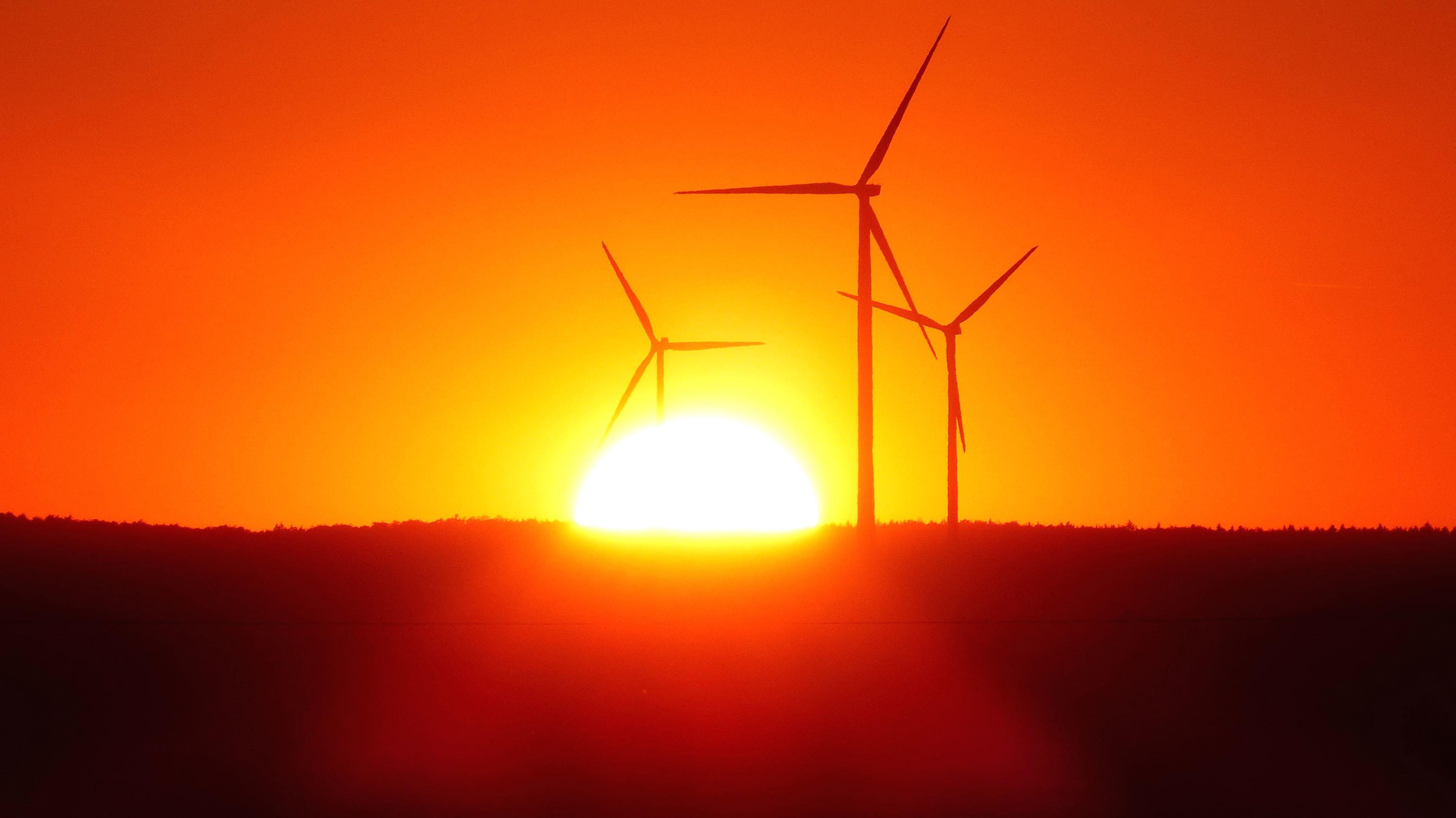 Free Picture Sky Sun Wind Turbines Windmills