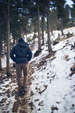 escursionista, escursionismo, accessori per uomo, percorso, persona, neve, sentiero, inverno, foresta