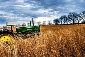 tractores, agricultura, nube, vehículo, país, cultivos, granja