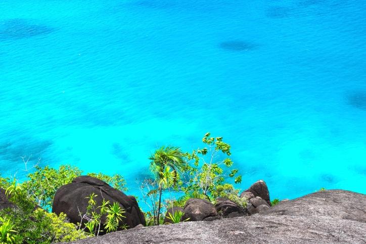 cliff, coast, ocean, plants, rock, tropical, water