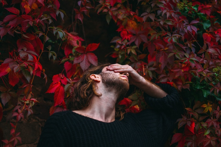 beard, color, fashion, leaves, man, plant, red, sweater, tree
