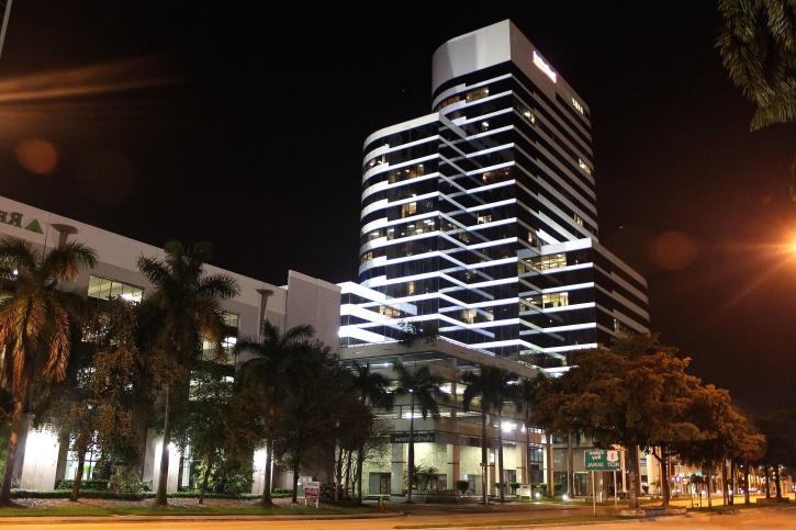 cidade, luzes, noite, palmeira, arquitetura, construção, negócios