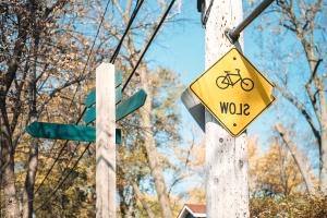 signes, signe de la circulation, feuilles, branches, danger, lumière du jour, arbre, rue