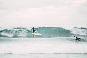 水、スポーツ、波、海、楽しい、サーファー