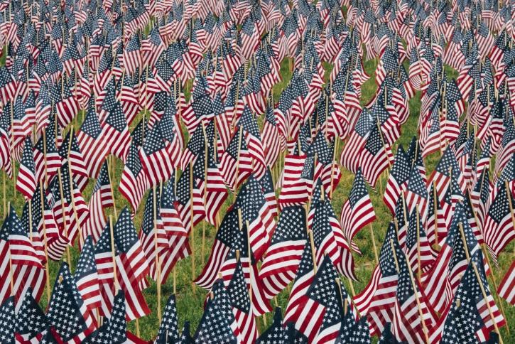 flaggor, USA, gräs, röd, blå