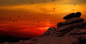 landscape, rock, silhouette, birds, dusk