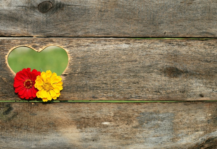 wood, wooden, color, design, flowers, heart, wall