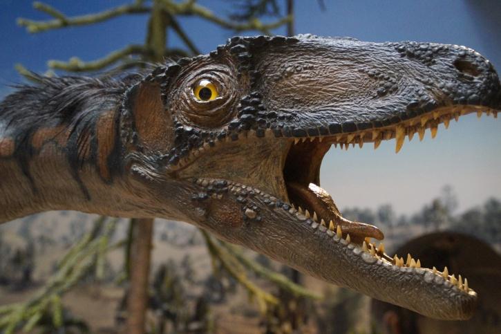 Spielzeug, Tiere, Dinosaurier, Raubtier, Replik, Reptil