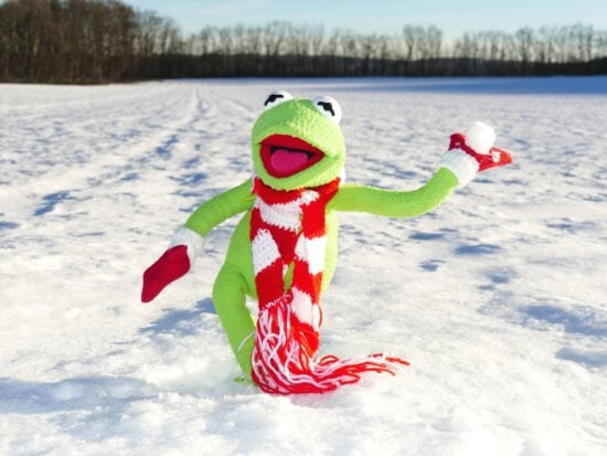 toy, winter, cold, frog, snow