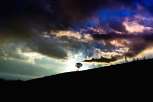 landscape, light, mountain, silhouette, cloud, hill, tree