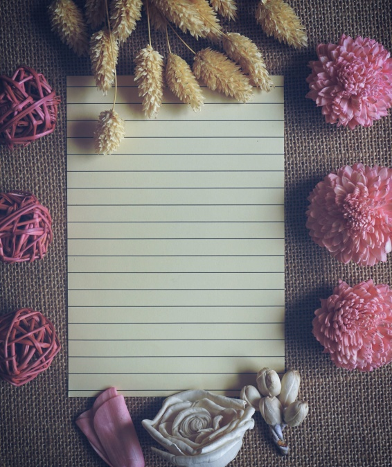 paper, plants, blank, flora, flowers
