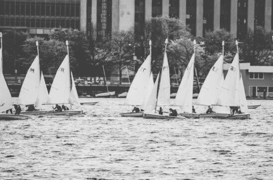nước, thể thao, cây, sailsboat, biển