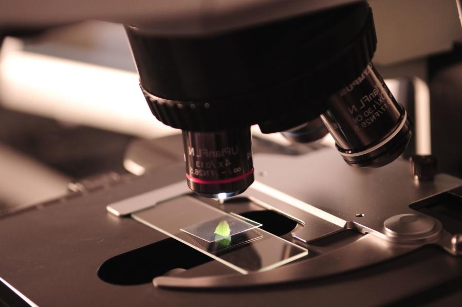 Mikrobiologi, mikroskop, penelitian, ilmu pengetahuan, teknologi