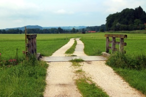 barn, bridge, cropland, farm, pasture, road, grass