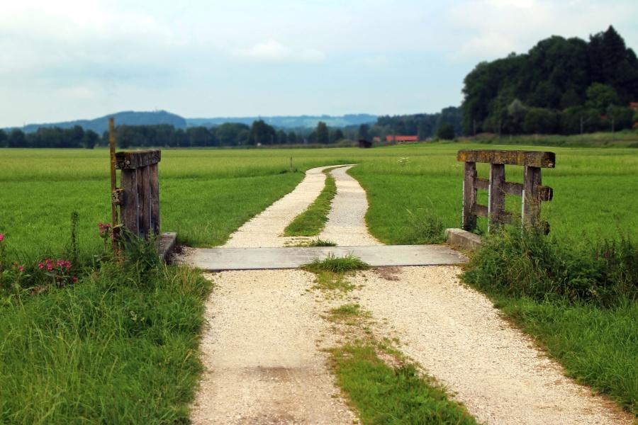 barn, bridge, cropland, farm, pasture, road, grass
