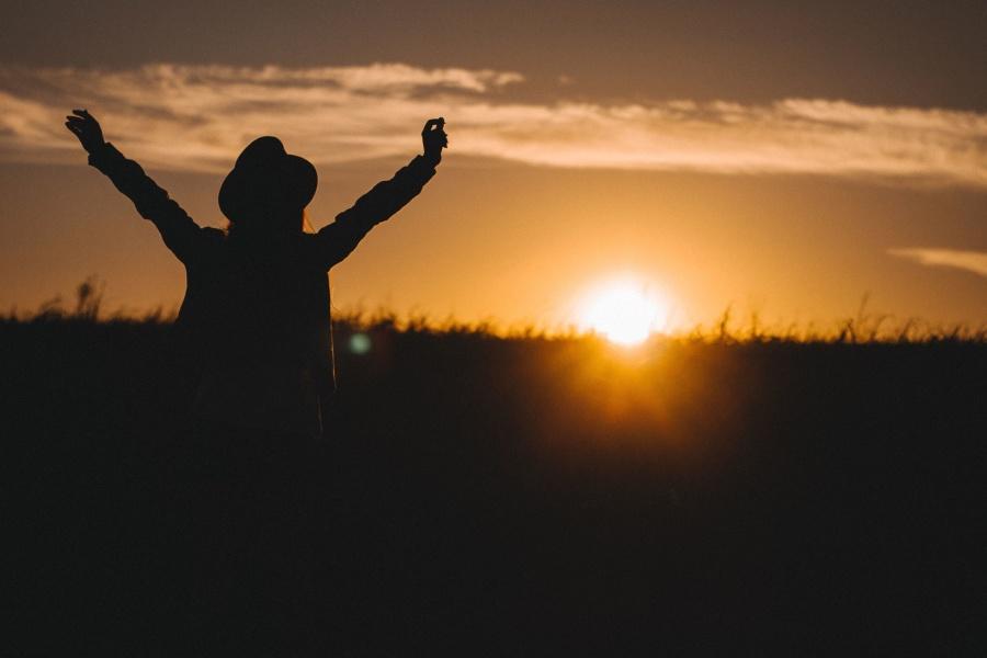 silhouette, sky, Sun, field, light, man