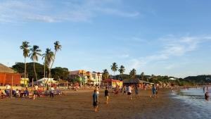 lidé, léto, moře, pobřeží, dav, písek, dřevo, palm, obloha