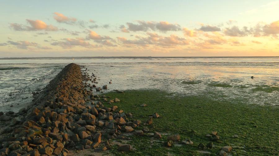 coast, water, sun, sky, nature, rock