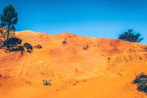 sky, sun, tree, bushes, desert, dry, hill