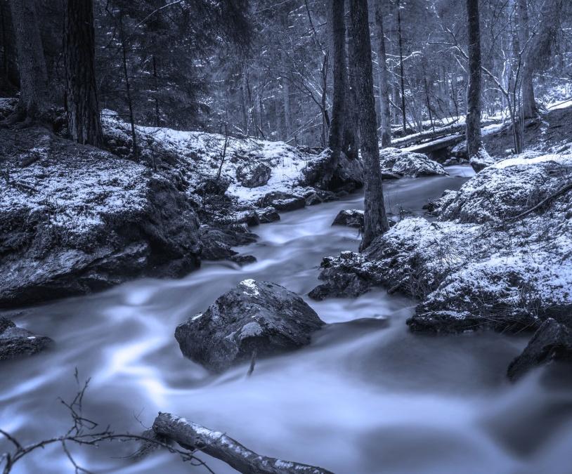 ป่า น้ำ ต้นไม้ ฤดูหนาว หิมะ
