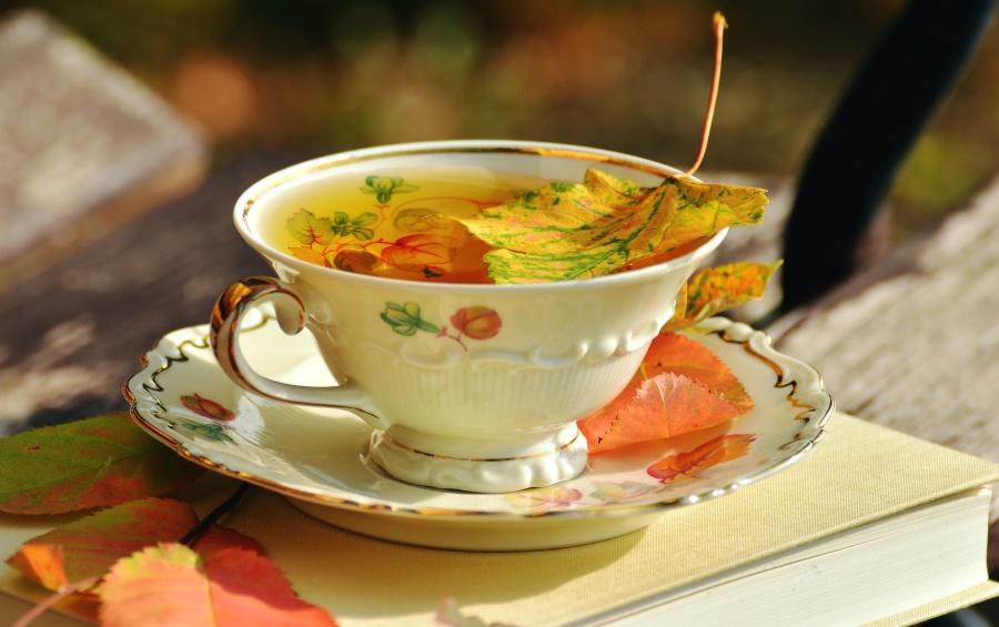 drink, leaves, mug, plate, porcelain, saucer, tea, book, cup