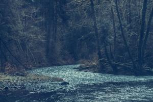 Parque, río, rocas, árboles, agua, madera, bosque, lago, montaña