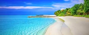 pláž, exotika, dovolená, oceán, palm, strom, dovolená, voda