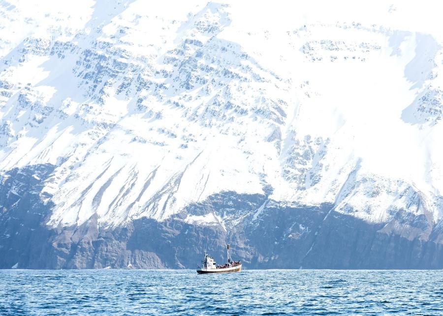 sea, ship, snow, water, winter, adventure, boat, cold