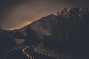 noche, niebla, hierba, carretera, árbol, madera, montaña