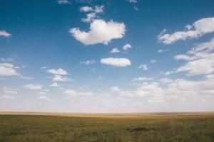 Feld, Himmel, Sonne, Landwirtschaft, Wolke, Pflanzen