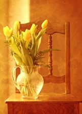 tulips, wood, chair, bouquet, flora, flower, arrangement, flower, vase