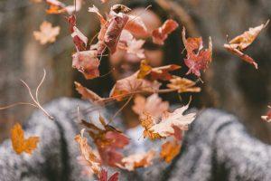 femme, branche, feuilles, érable, motion, nature, parc