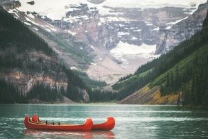 summer, water, wood, boat, conifers, fir, trees, kayak, lake