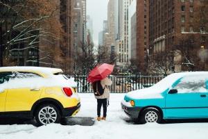 kišobran, urbane, vozila, vrijeme, automobili, grane, zgrada